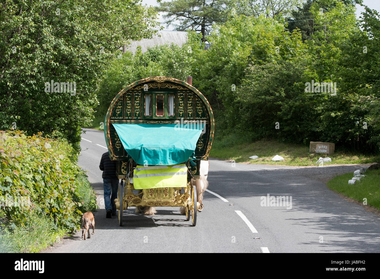 Gypsy travellers with horse drawn caravan on the A683 near Cautley, Cumbria, UK. Stock Photo
