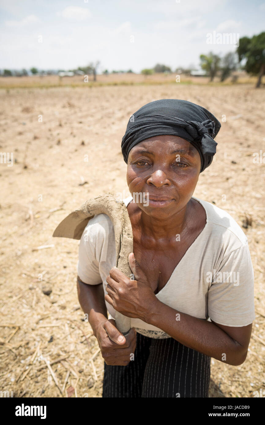 A farmer sits in her barren maize field in northern, Ghana, West Africa. - Stock Image