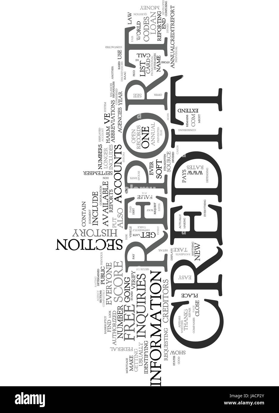 WHAT S IN A CREDIT REPORT TEXT WORD CLOUD CONCEPT - Stock Vector
