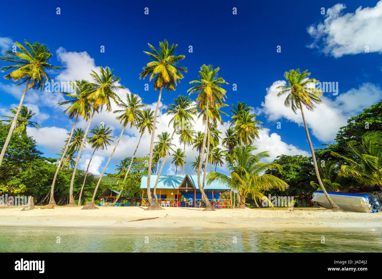 Colorful shack on a beach surrounded by palm trees in San Andres y ...