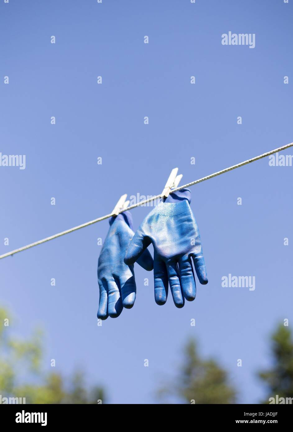 Blue rubber gloves pinned to a clothes line. - Stock Image
