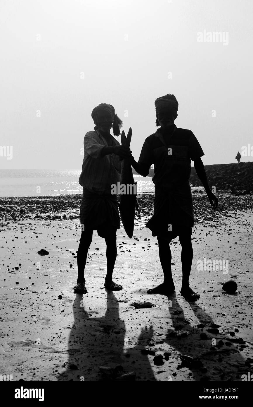 Digha, West Bengal in India on 7th February in 2017 - Fishermen collect fish in the coast of Digha, India. Fishermen - Stock Image