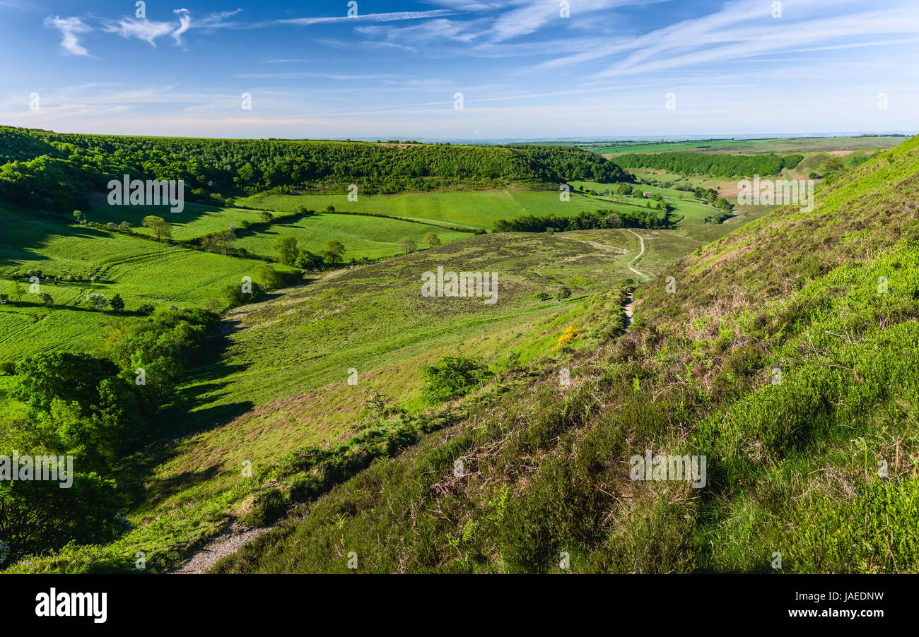 Geological depression in the North York Moors with view of farmland, moorland, and vegetation on a fine spring morning - Stock Image