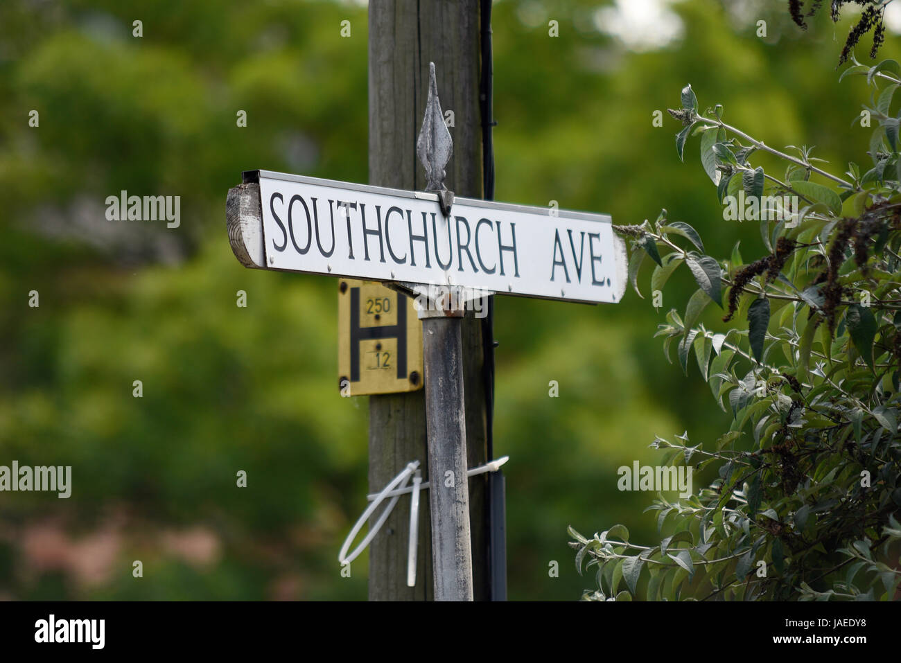 Southchurch Avenue, Southend on Sea, Essex. Road sign with space for copy Stock Photo