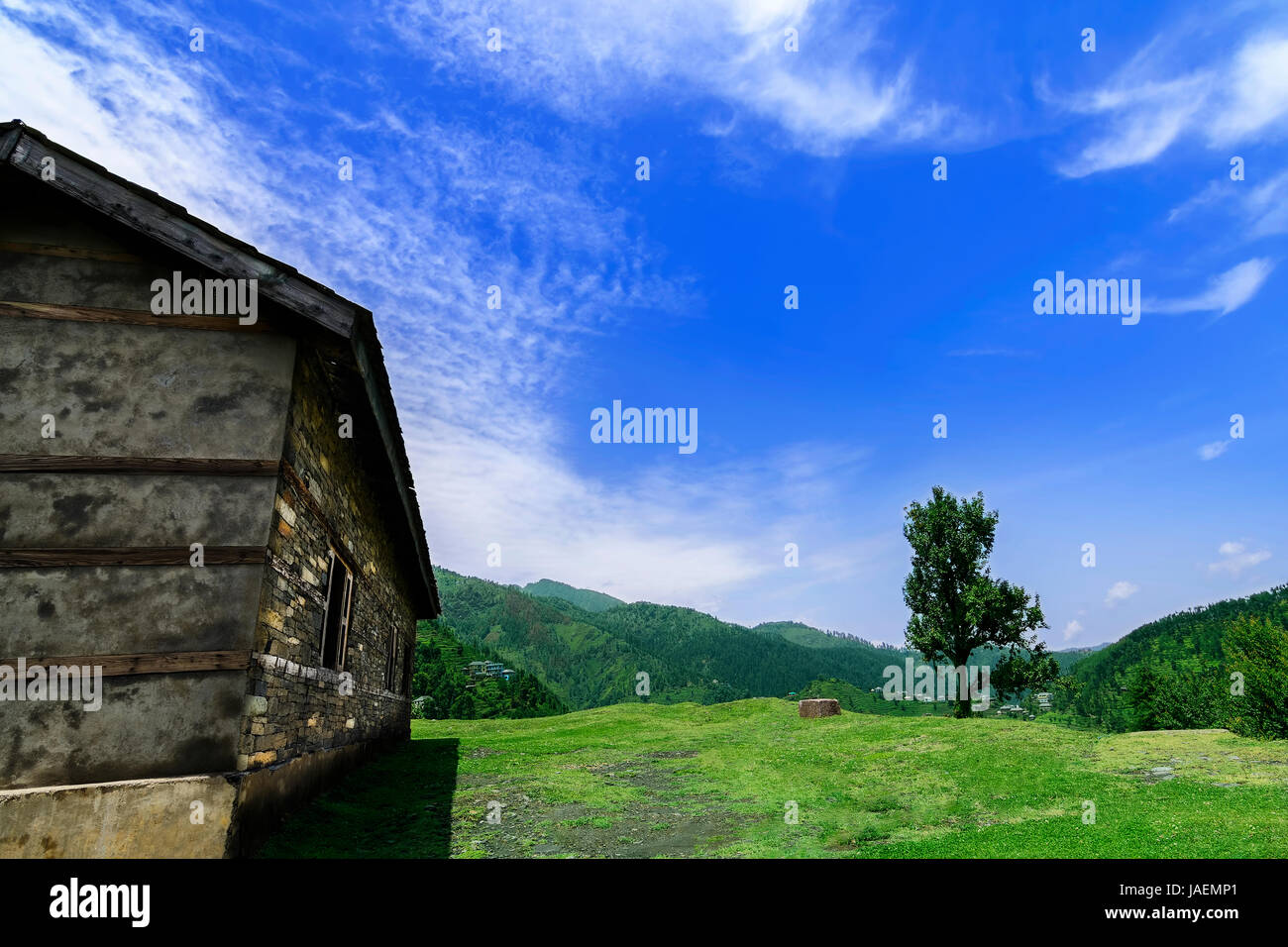 Idyllic and beautiful landscape with an old abandoned wooden house in the Janjehli valley, Himachal Pradesh - Stock Image