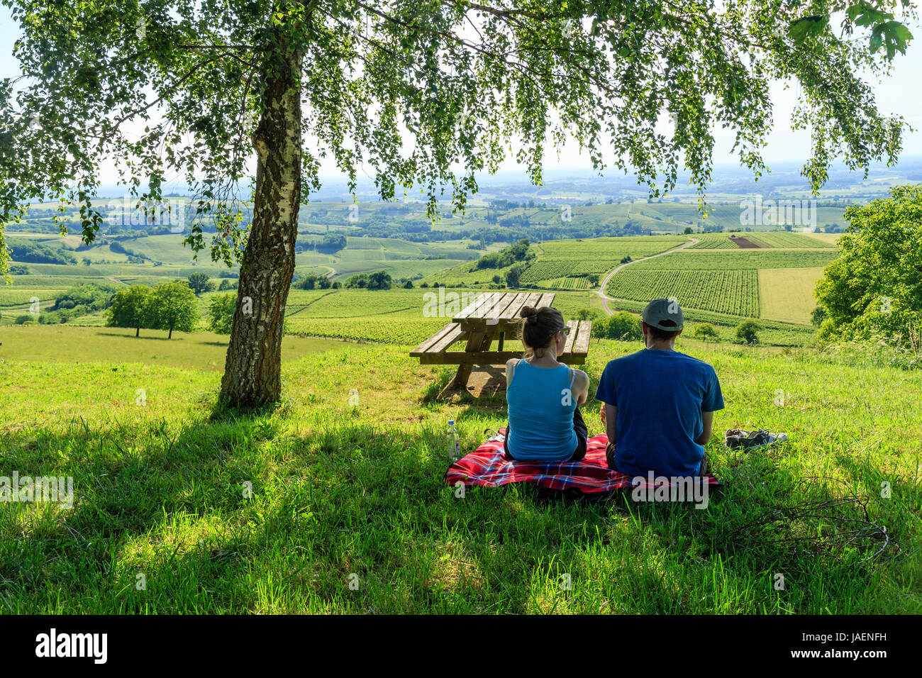 France, Jura, Pupillin, view of the  Pupillin vineyard and picnicking tourists - Stock Image