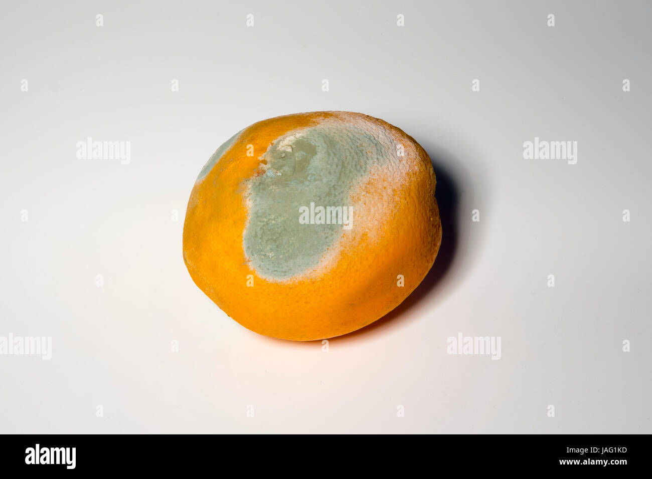 Verdorbenen Lebensmittel, Orange - Stock Image