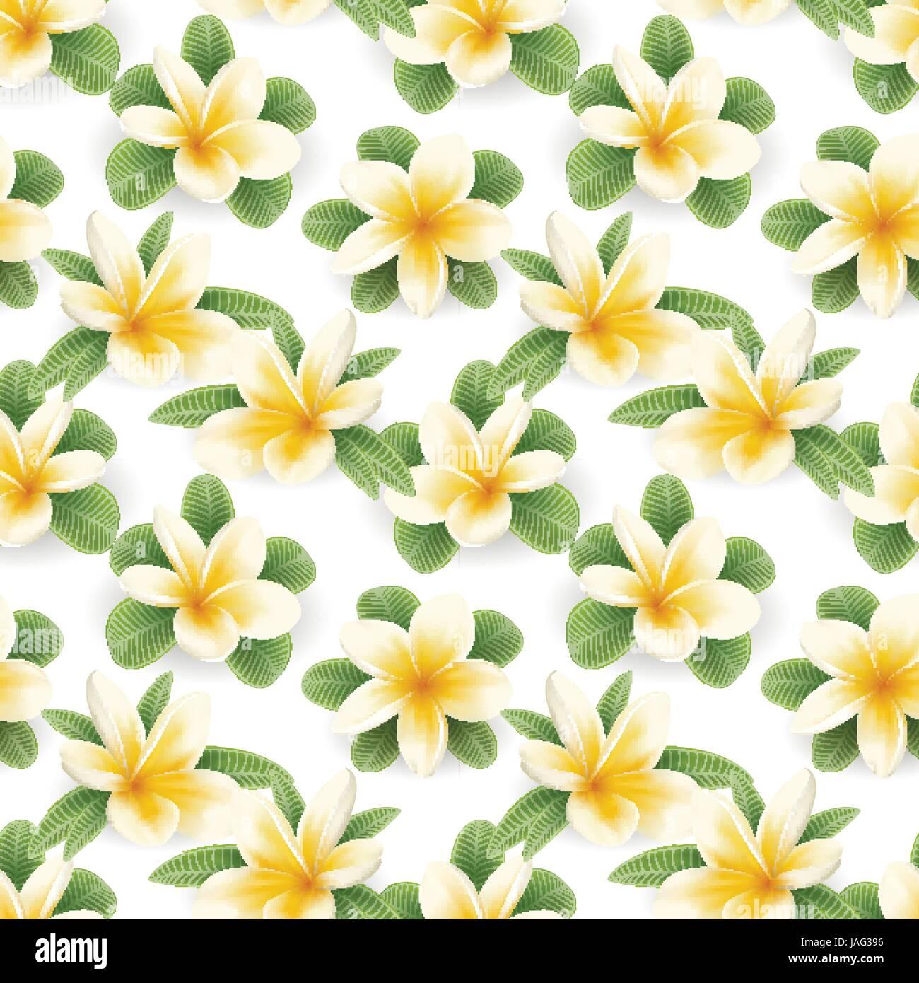 Plumeria seamless pattern - Stock Vector
