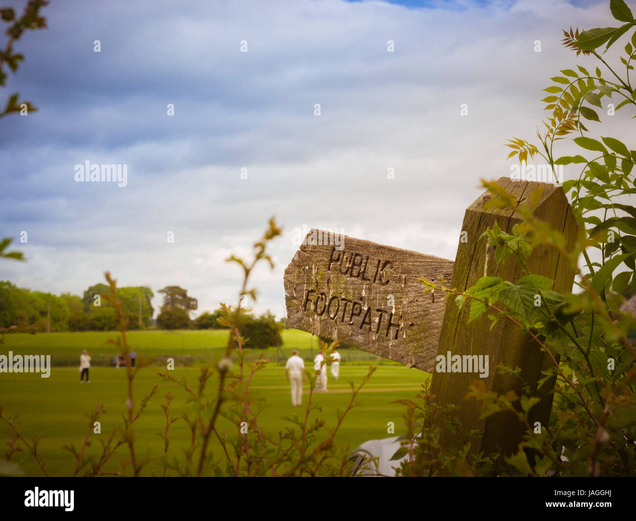 Public Footpath wooden sign with game of cricket being played in background - Stock Image