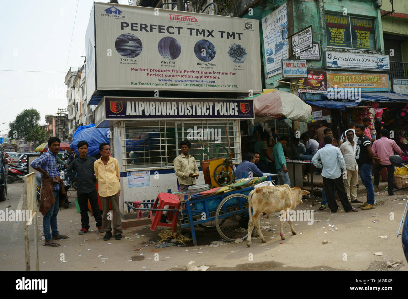 Street in Phuentsholing with street vendors ,shops, stores, cow, West Bengal, India - Stock Image