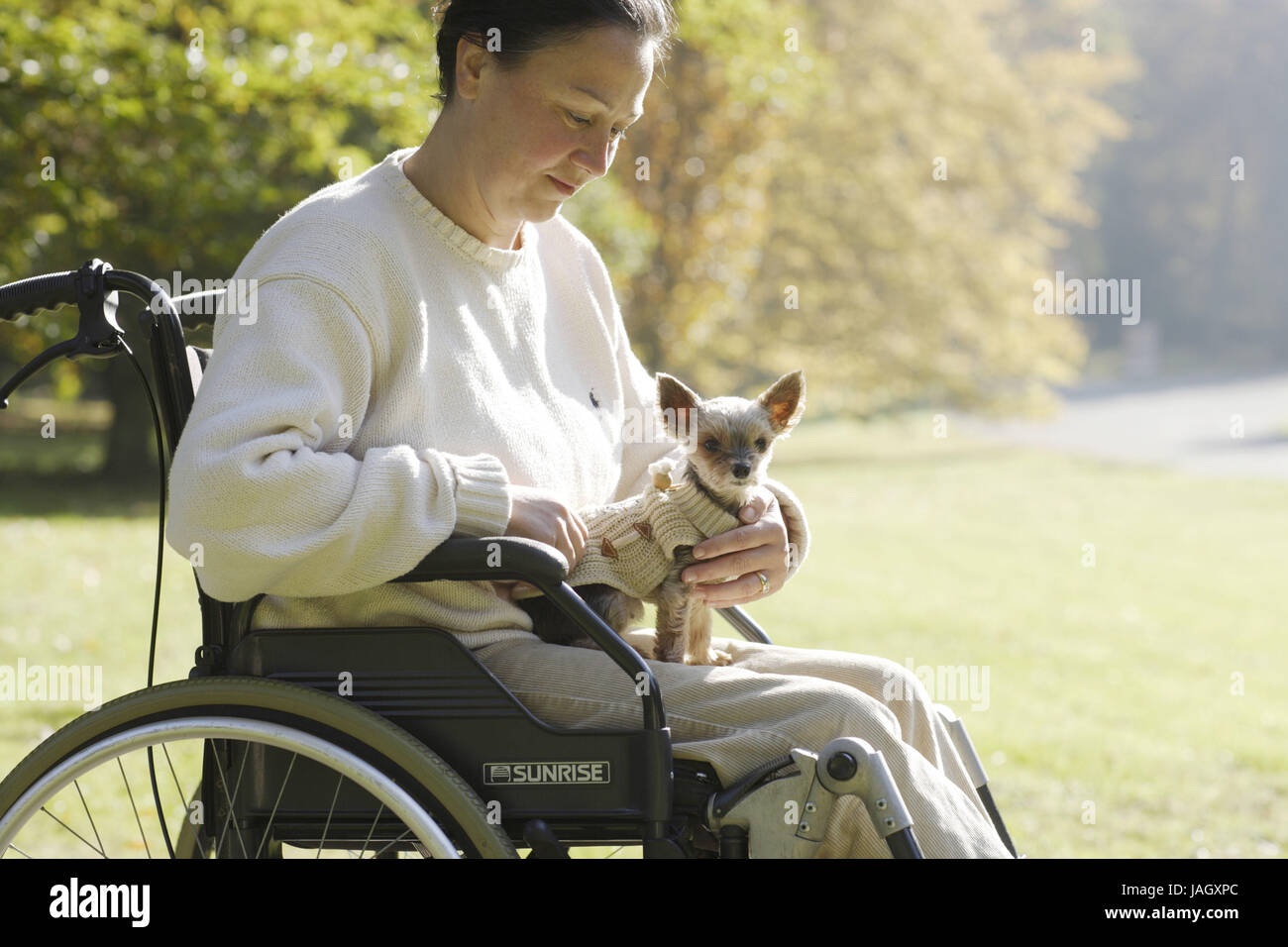 Woman sits in the invalid's wheel chair,small dog on the lap, Stock Photo