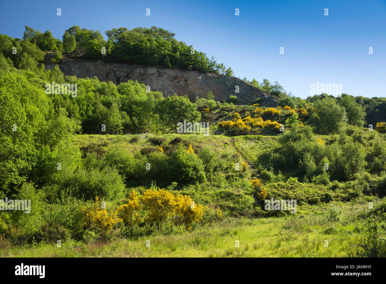 UK, England, Shropshire, The Wrekin, Ercall Wood Quarry, The Unconformity, joint of sedimentary and igneous rocks - Stock Image