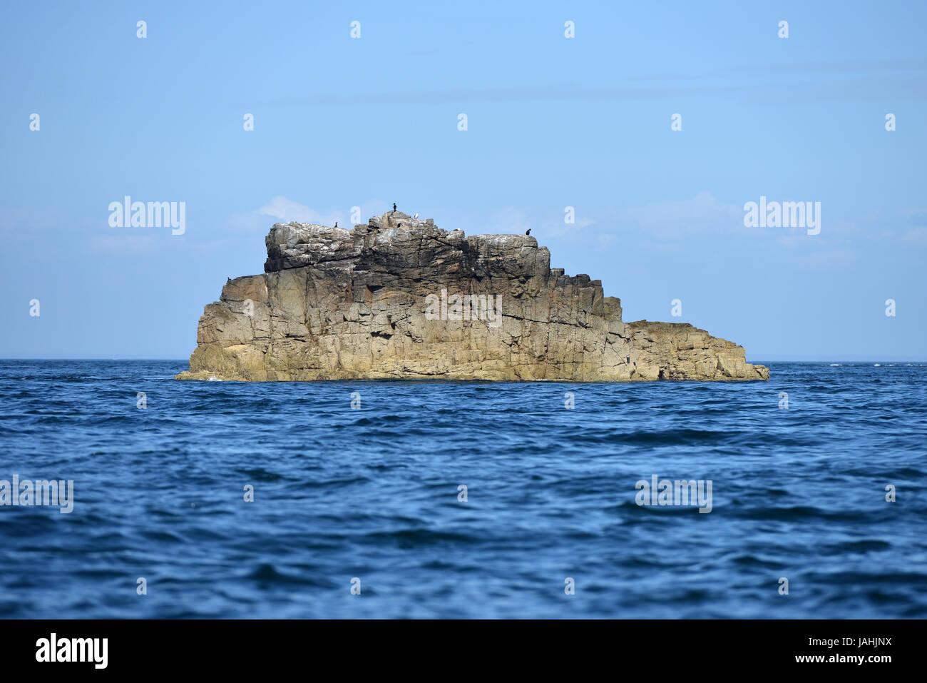 Sea rock with seabirds, Sark, Guernsey. - Stock Image