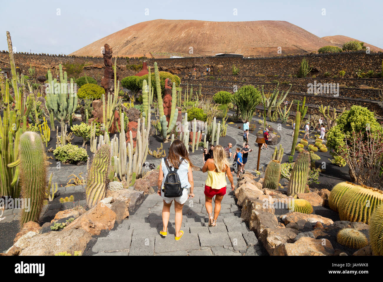 Exelent Creation Gardens Images - Brown Nature Garden ...