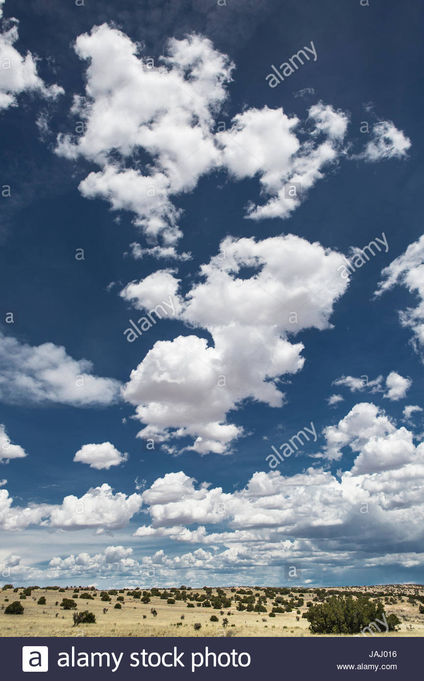 Fluffy cumulus clouds above desert landscape in northeastern New Mexico. - Stock Image