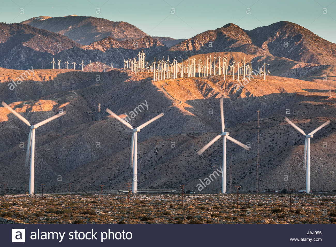 A few of the more than 3,000 wind turbines at the San Gorgonio Pass Wind Farm outside Palm Springs. The facility - Stock Image