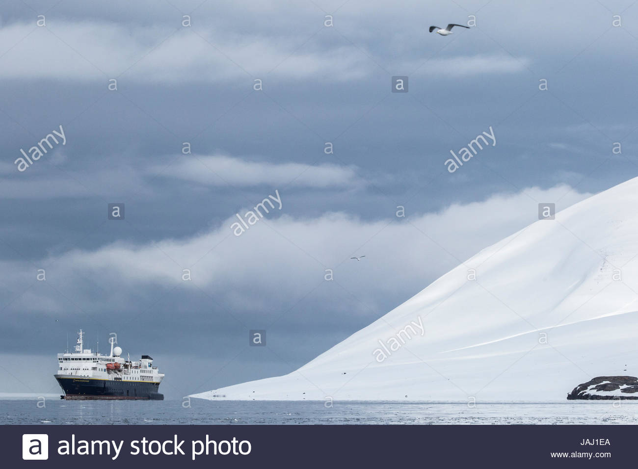 The expedition cruise ship National Geographic Explorer at anchor in Woodfjorden. - Stock Image