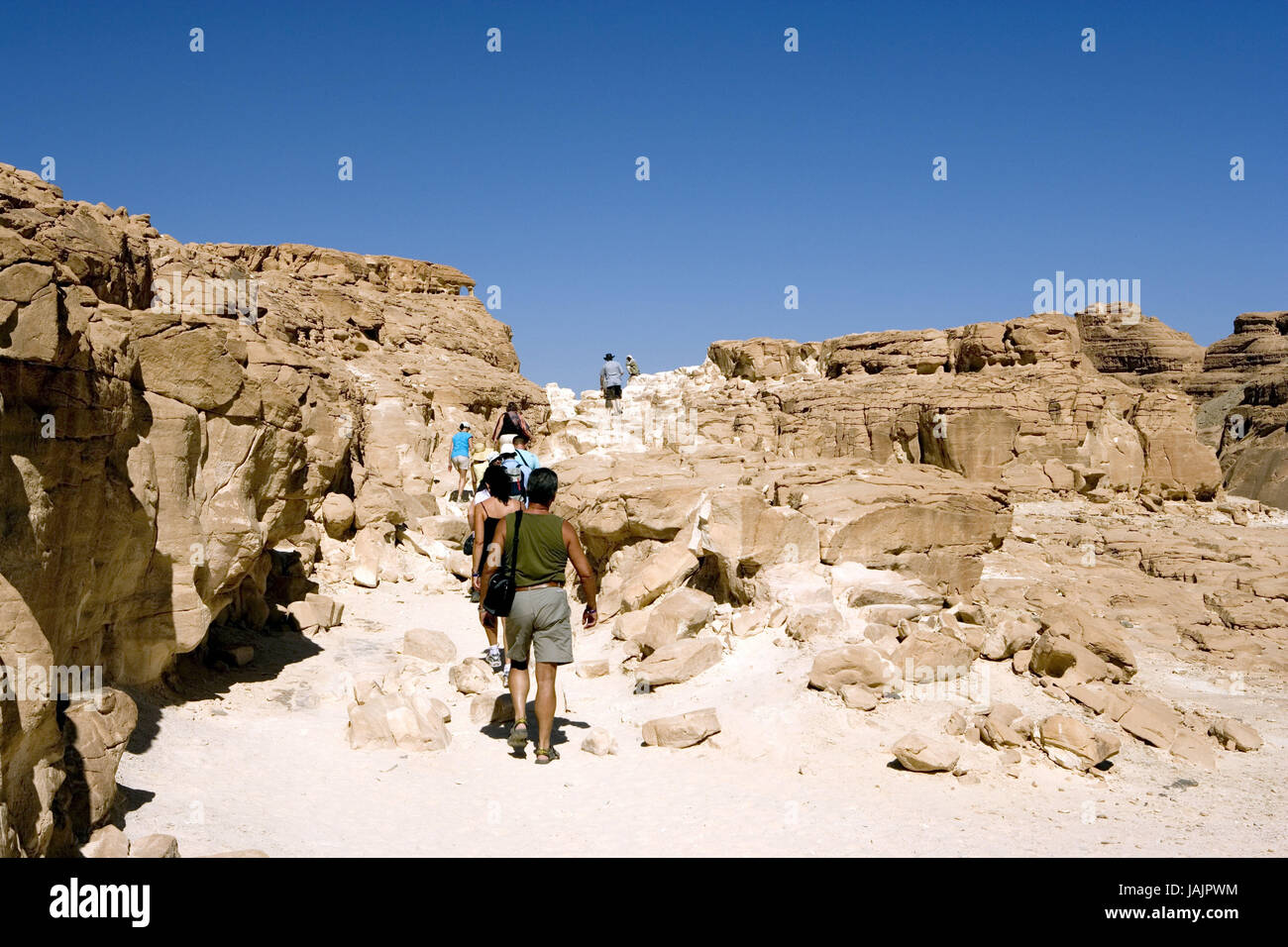Egypt,Sinai,desert Sinai,White canyon,area of Nuweiba,tourists, - Stock Image