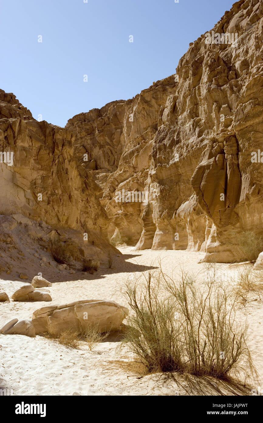 Egypt,Sinai,desert Sinai,White canyon,area of Nuweiba, - Stock Image