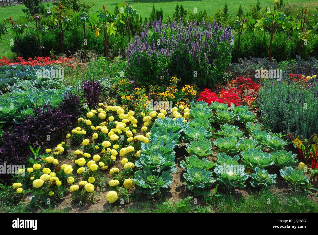 Biogarden Stock Photos Biogarden Stock Images Alamy