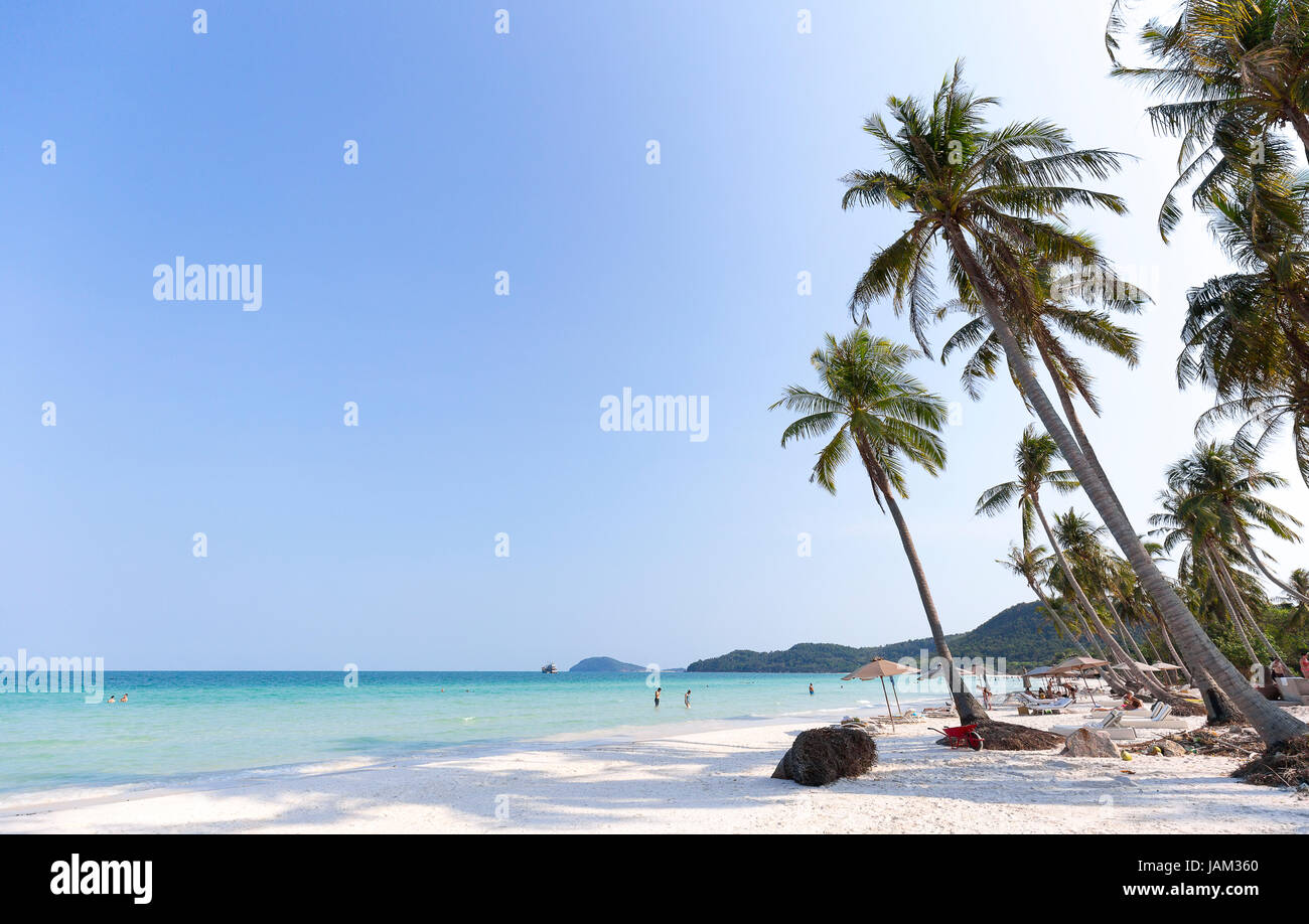 Phu Quoc Beach clear blue sky and palm trees on white sand beach - Stock Image