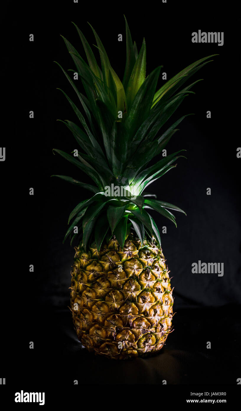 Fresh and Ripe Pineapple - Stock Image