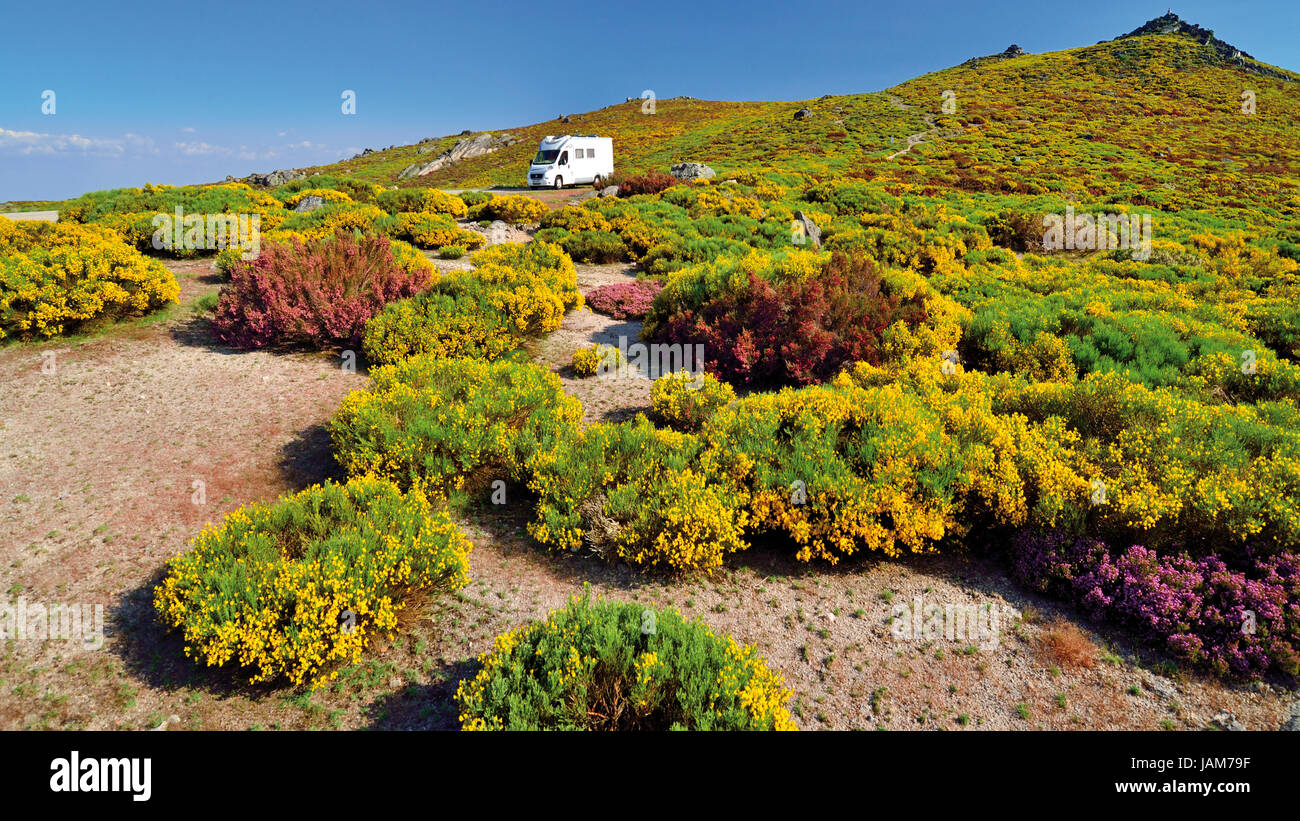 Motorhome alone in the middle of green mountain vegetation with yellow and violett flowers in blossom Stock Photo