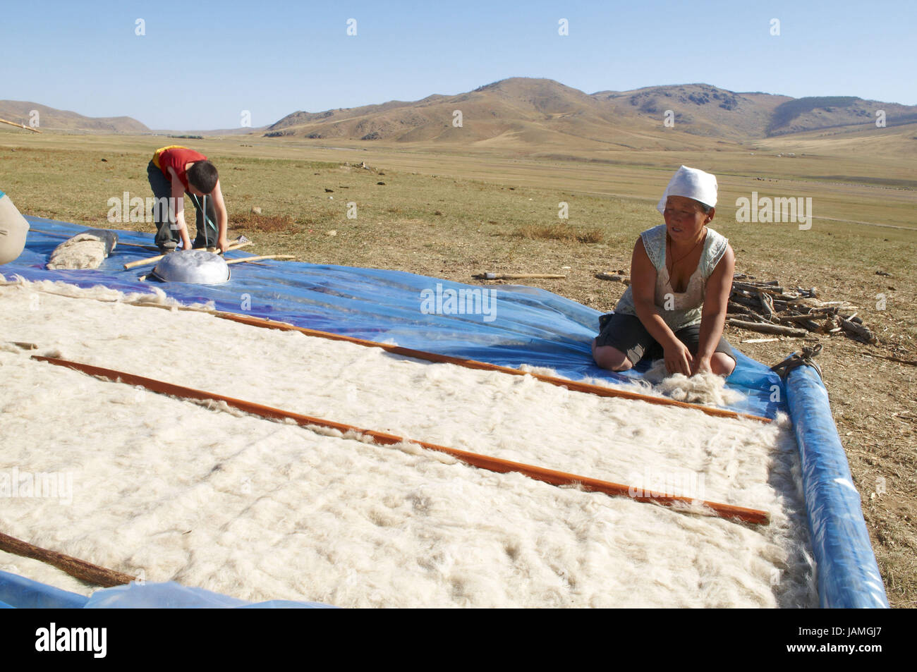Mongolia,Central Asia,Ovorkhangai province,historical Orkhon valley,UNESCO world heritage,Orkhon flux,nomad,wool Stock Photo