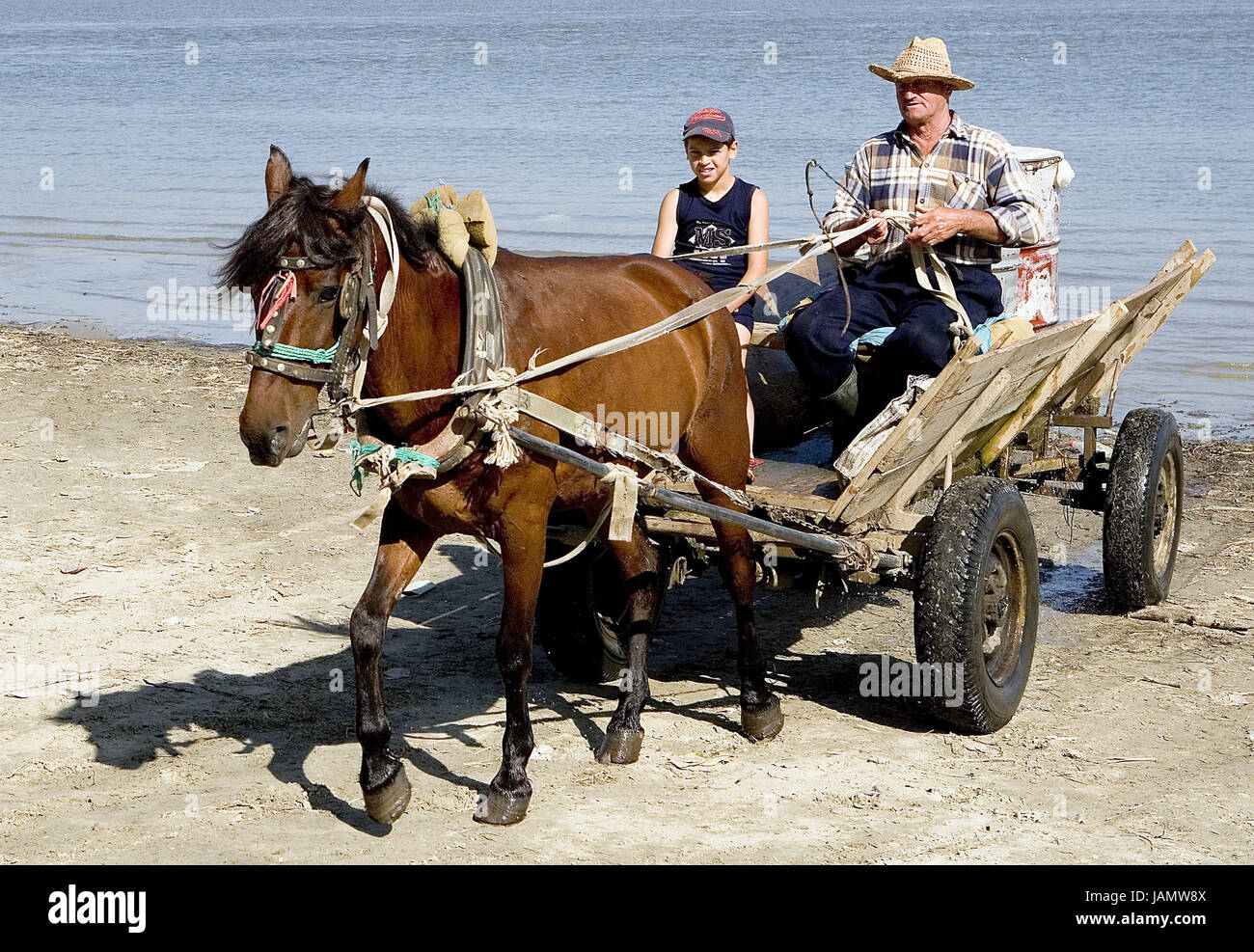 Romania,Danube delta,Galati,flux Danube,horse carriage,man,boy,no model release,town,water,outside,carriages,carts,horse,animal,benefit - Stock Image