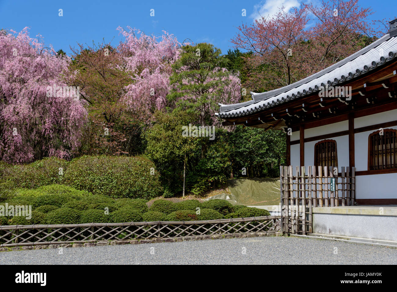 Traditional architecture and garden of Kuri building in the Ryoanji temple Stock Photo