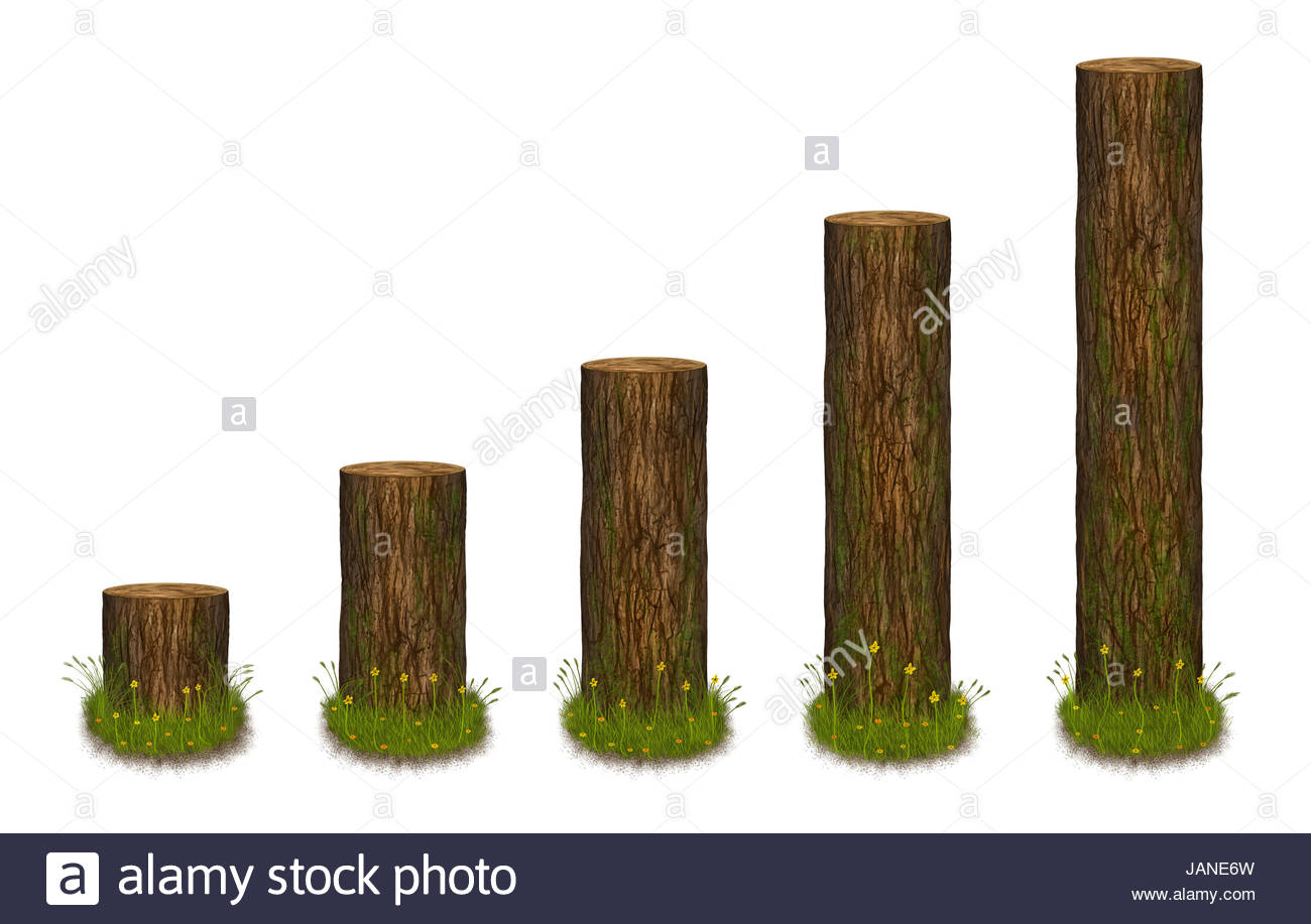 statistics chart formed as tree trunks  statistics diagram in nature style   illustration
