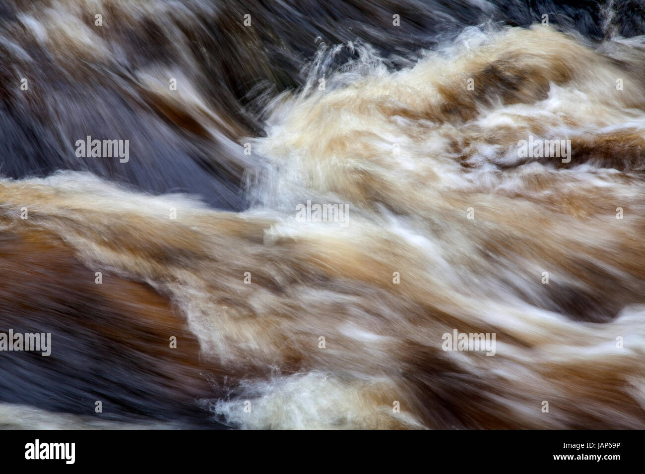 River Wharfe at The Strid, Bolton Abbey Estate, Wharfedale, Yorkshire Dales - Stock Image