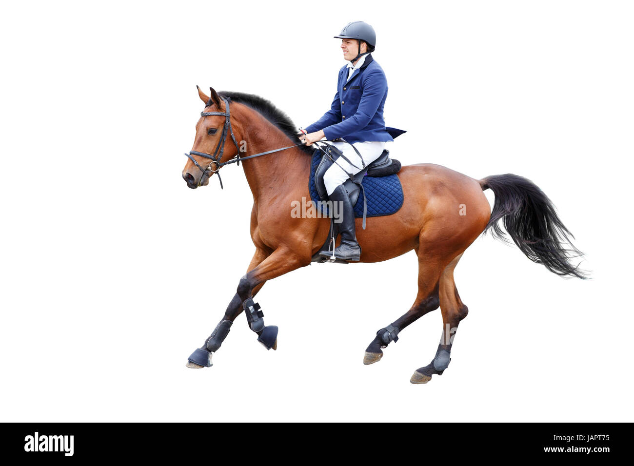 Young Rider Man In Helmet On Bay Horse Isolated On White Background Stock Photo Alamy