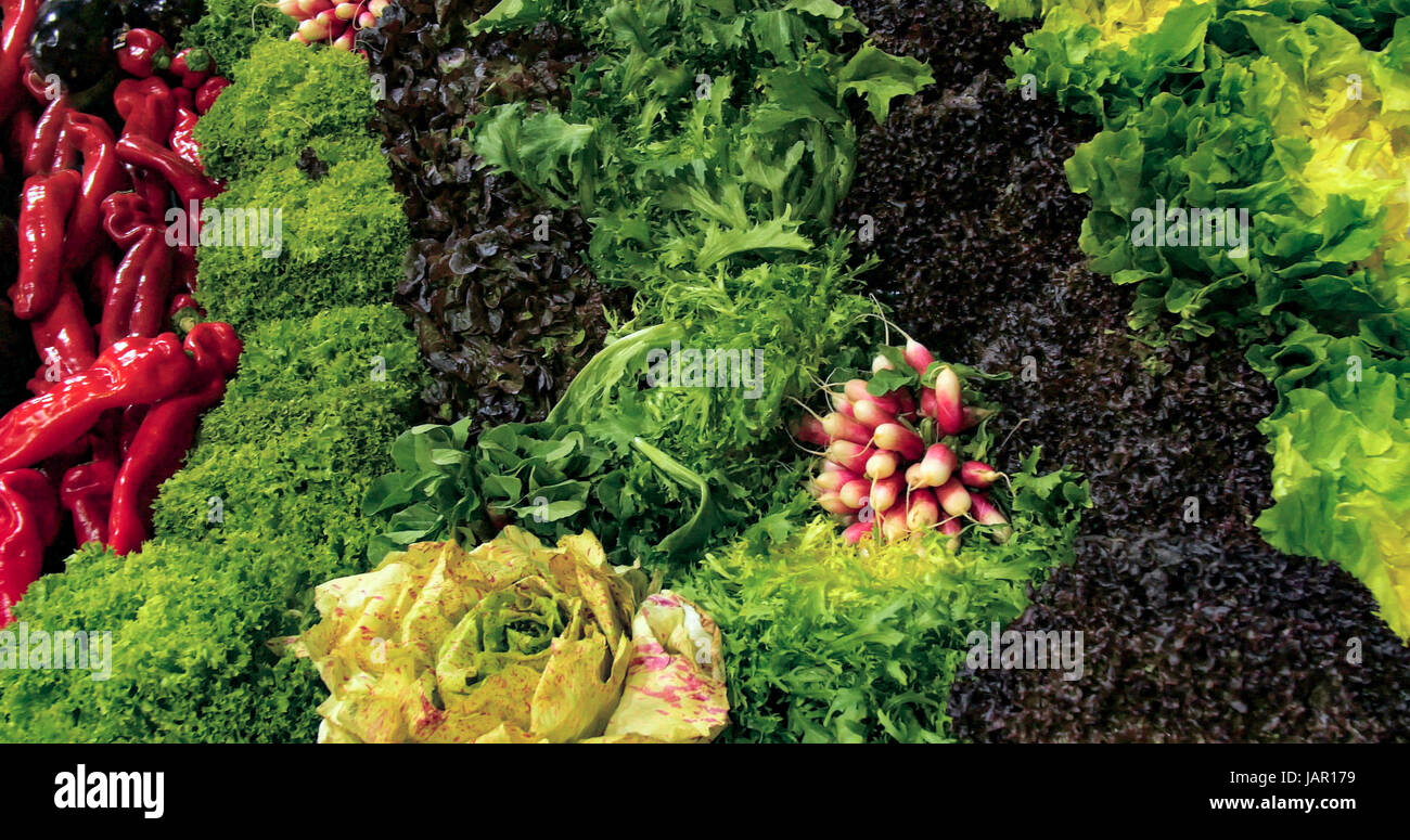 Assortment of lettuce and other salad ingredients at a food market - Stock Image