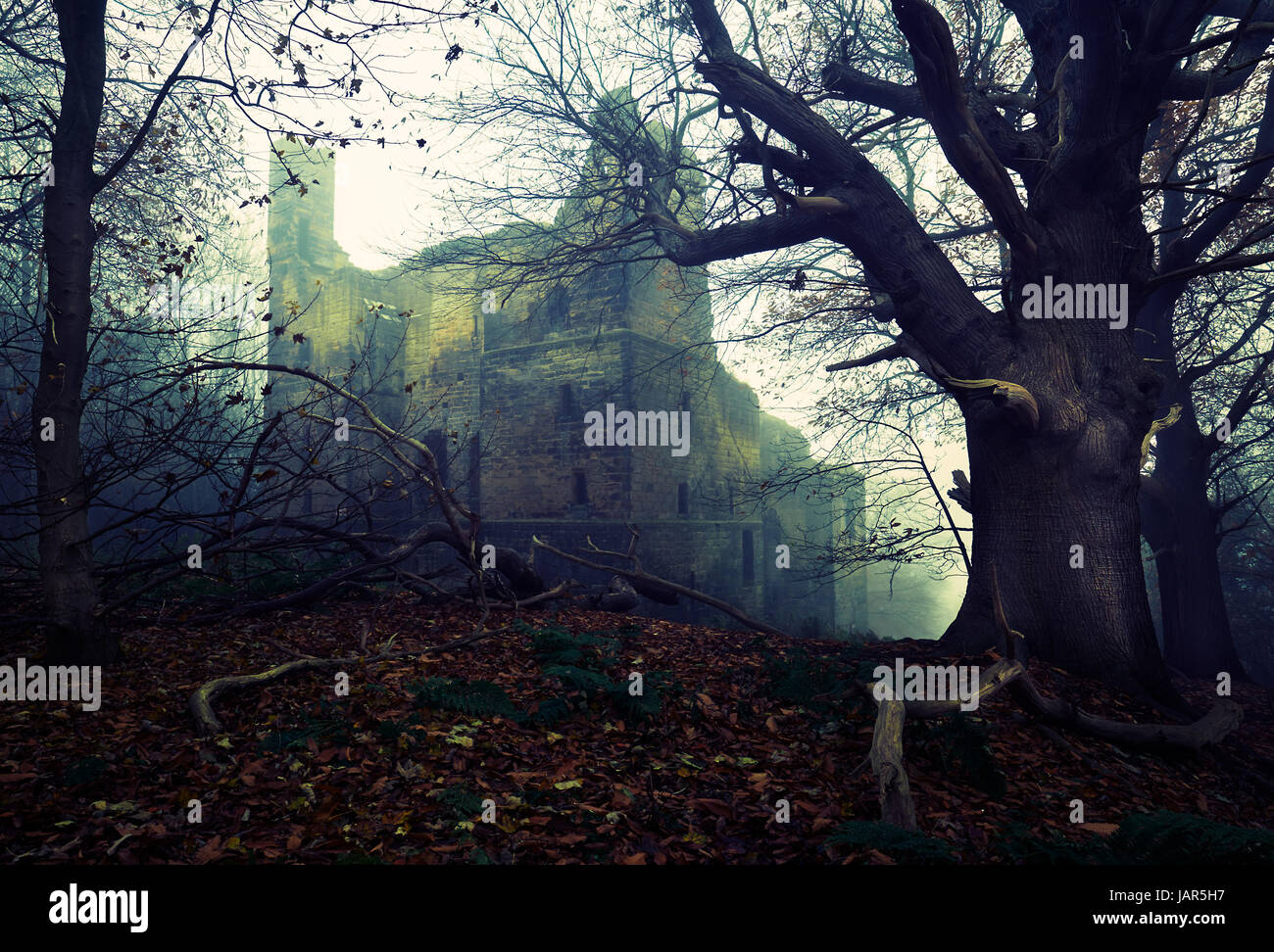 A rather spooky image of Harewood Castle on the Harewood Estate, Yorkshire. - Stock Image
