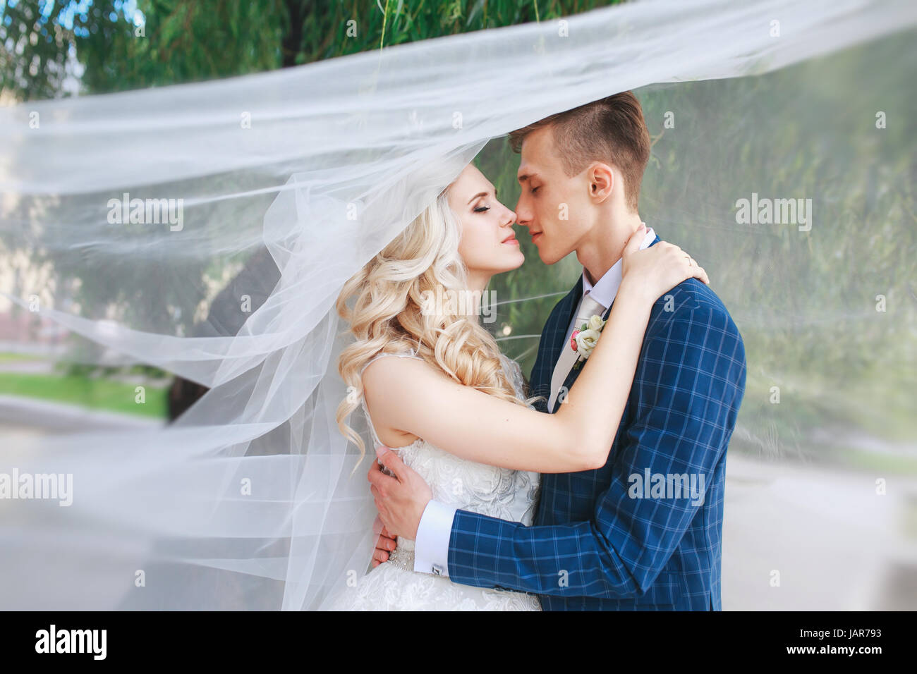 07a5ca794fb Wedding couple kissing covered veil .Wedding romantic couple is hugging  each other. Beauty bride with groom