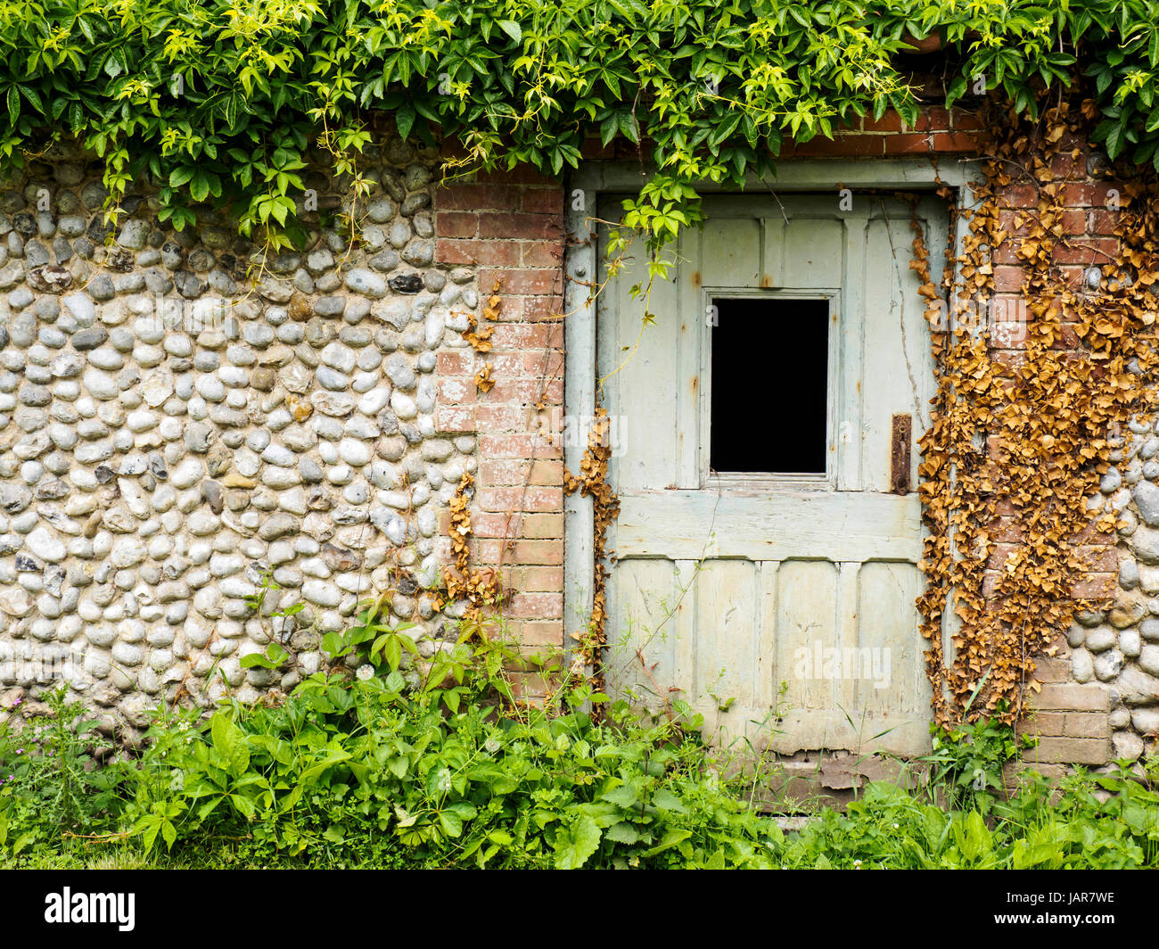 Old wooden doors in brick and flint walls in a a rustic garden in Norfolk, England. Stock Photo