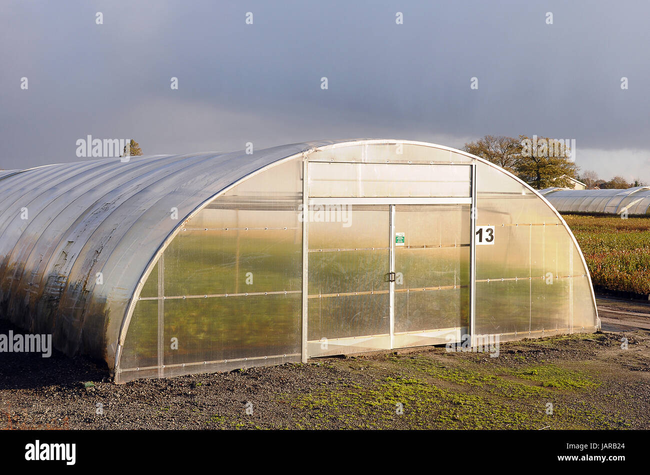 glasshouse - Stock Image