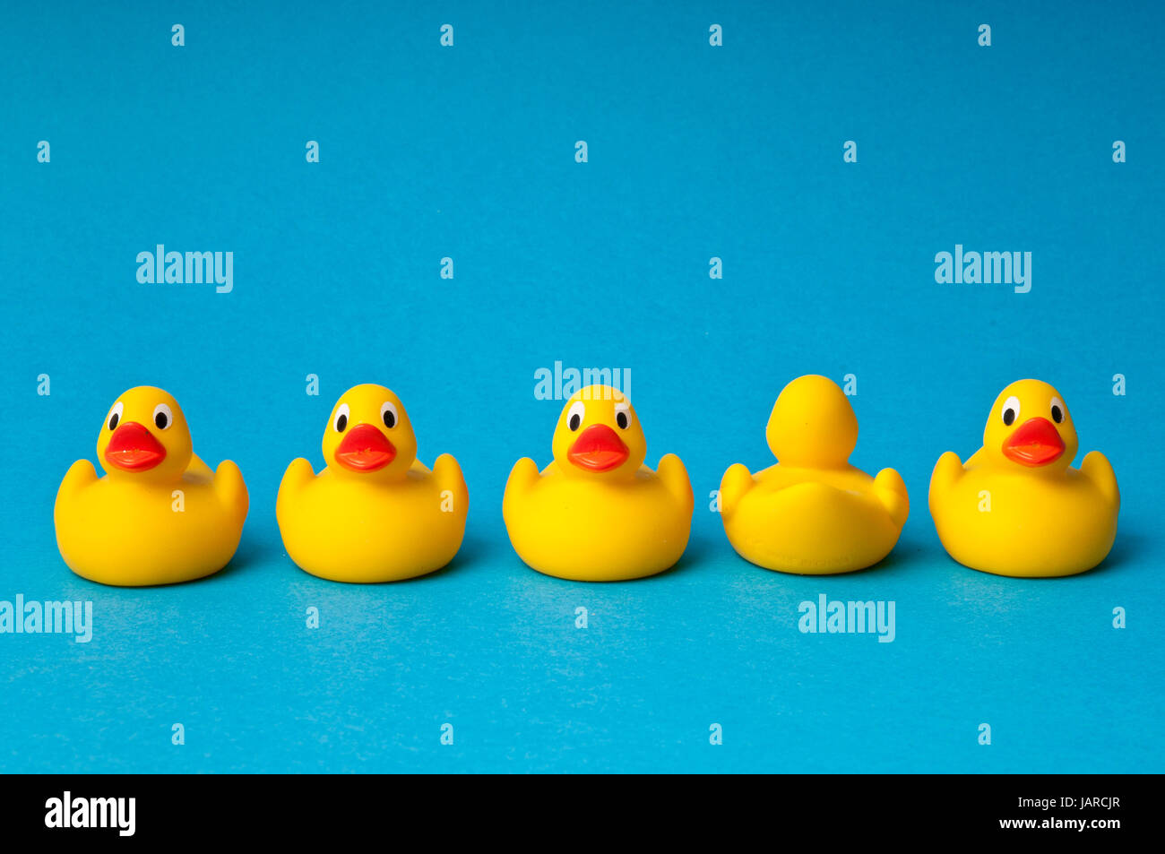 row of yellow rubber toy ducks, one turned way showing the back side - Stock Image