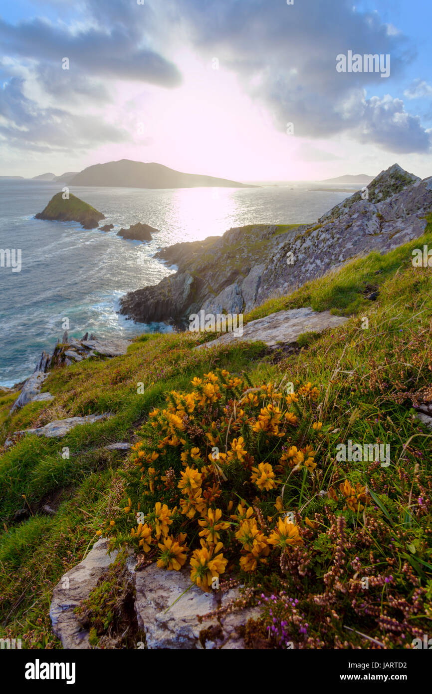 looking from dingle peninsula in western ireland towards blasket islands while sky is clearing,  coordinates: 52.109576, Stock Photo