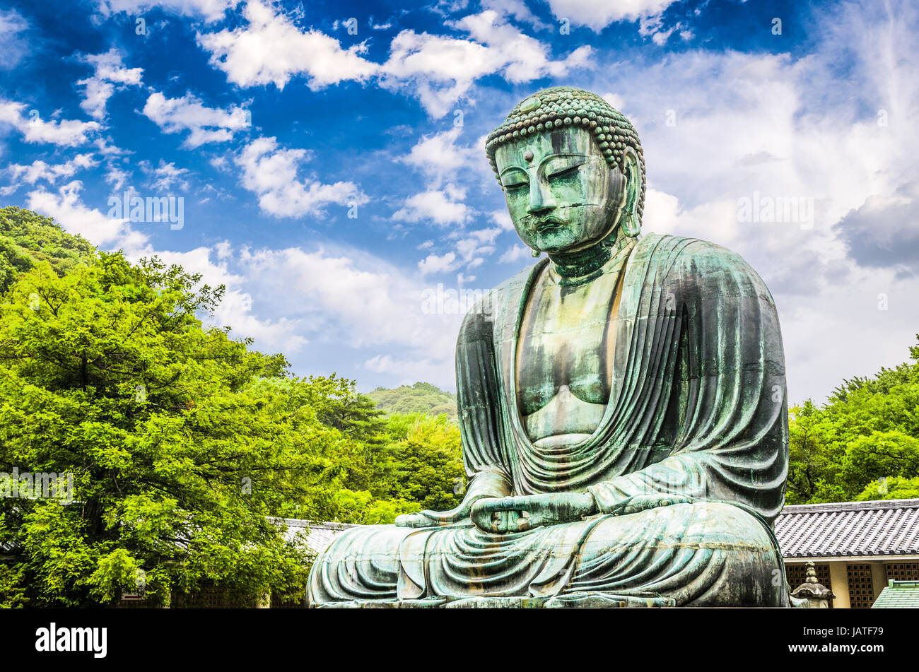 The Great Buddha (Daibutsu) on the grounds of Kotokuin Temple in Kamakura, Japan. - Stock Image
