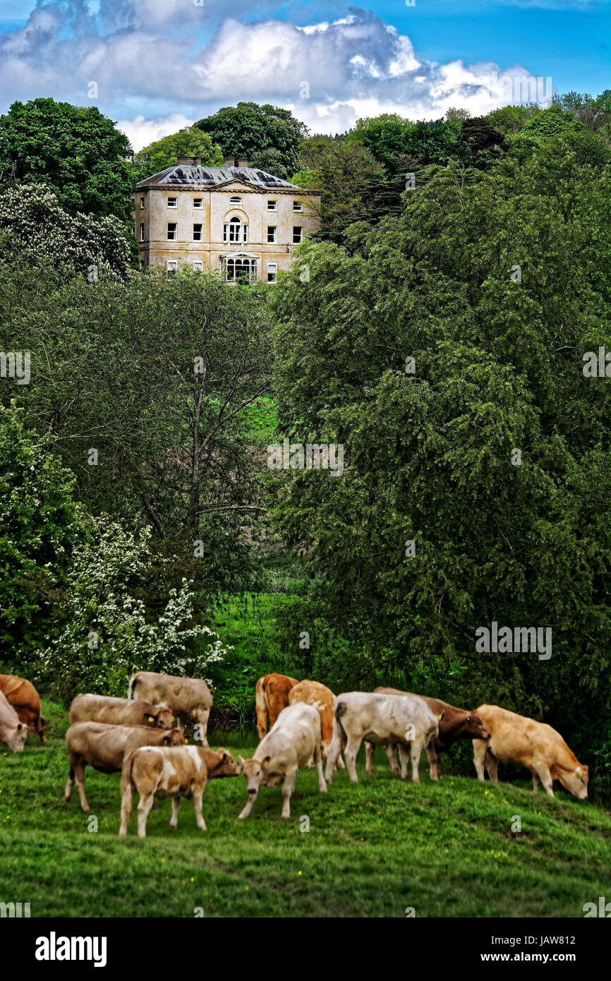 Ford Mansion Stock Photos & Ford Mansion Stock Images - Alamy