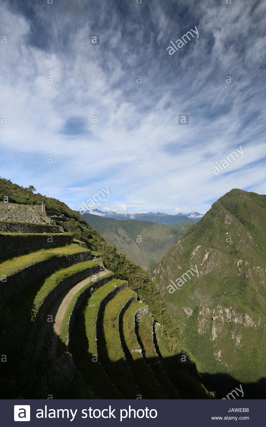 Terraced field at Machu Picchu ruins in Peru. - Stock Image