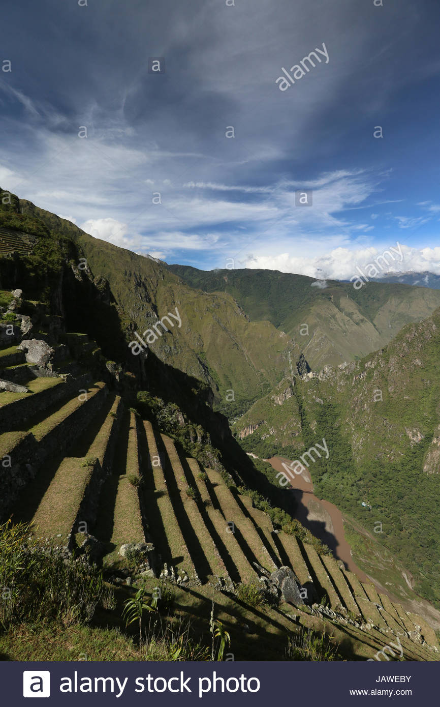 Terraced field at Machu Picchu Inca ruins in Peru. - Stock Image