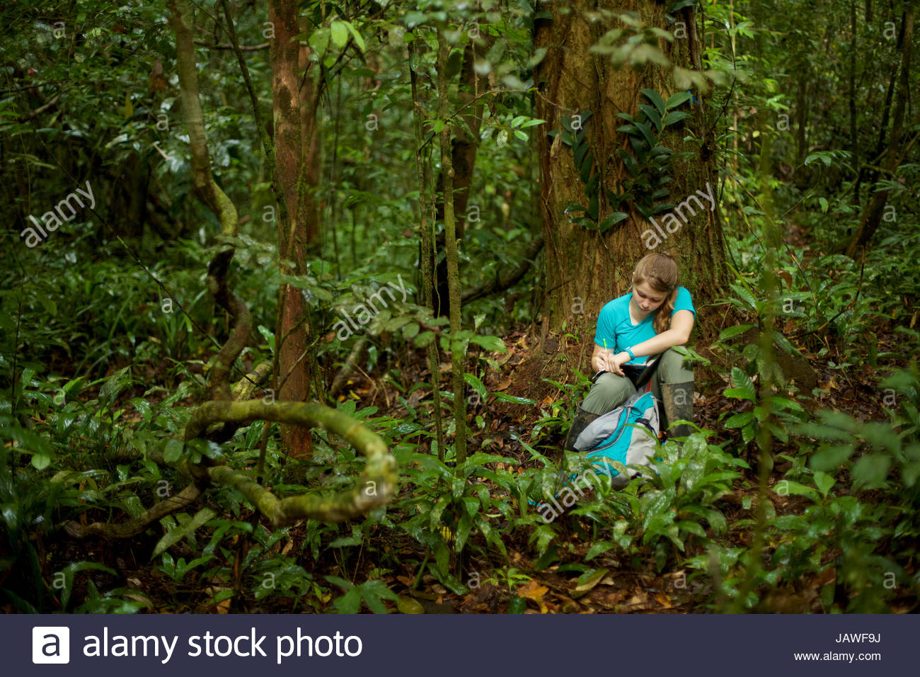 A girl sitting in the Borneo rain forest, writing in her notebook. - Stock Image