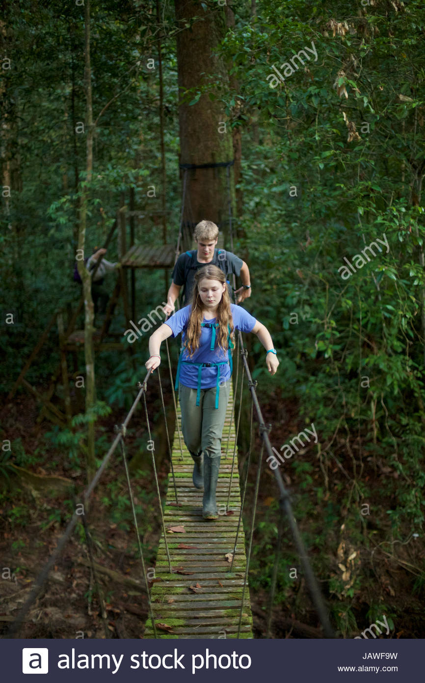A boy and girl cross a suspension bridge in the Borneo rainforest. - Stock Image