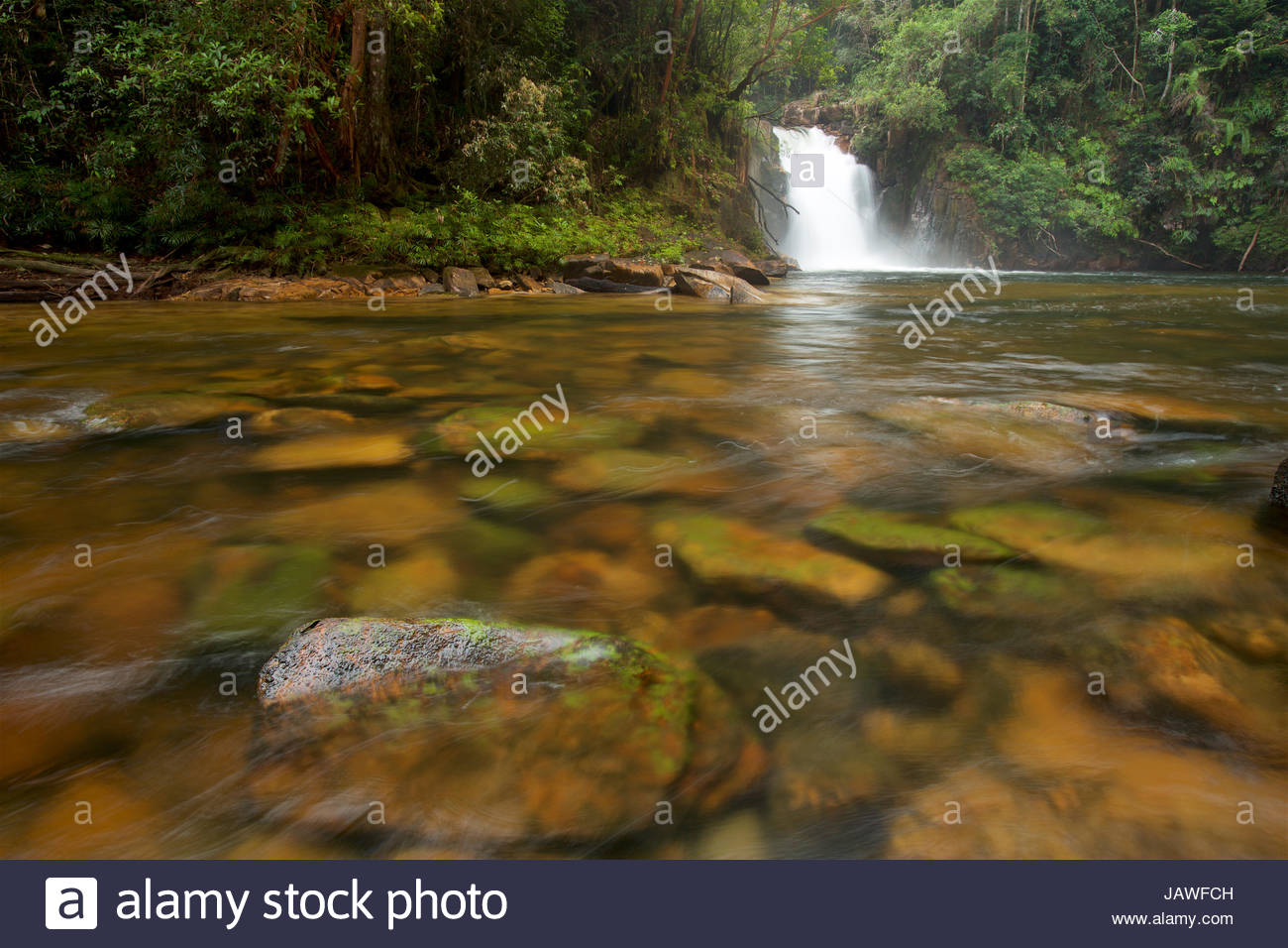Riam Berasap, the Falls of the Mists, is the largest waterfall in Gunung Palung National Park. - Stock Image