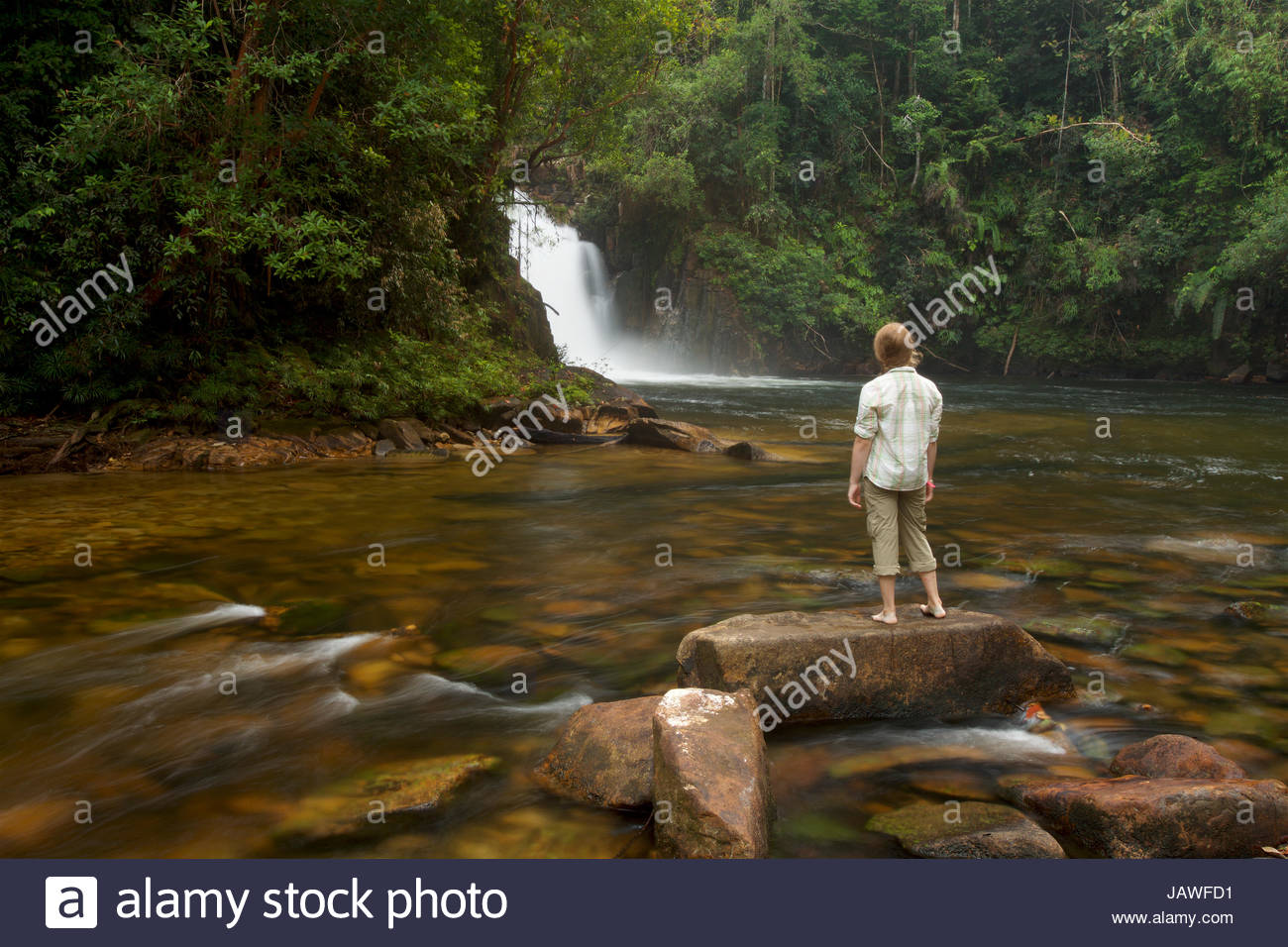 A girl watches Riam Berasap, the Falls of the Mists, which is the largest waterfall in Gunung Palung National Park. - Stock Image