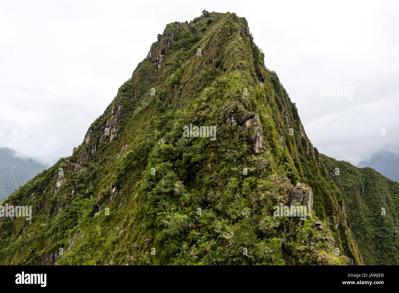 The sheer jagged peak of Huayna Picchu covered in forest. - Stock Image