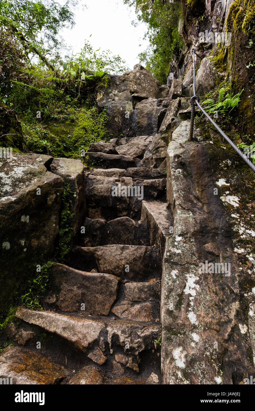 Steep ancient stone stairs carved into the rock by the Inca at Huayna Picchu. - Stock Image